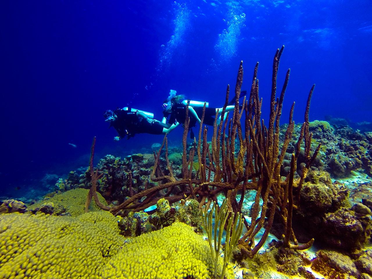 Dykning utomlands